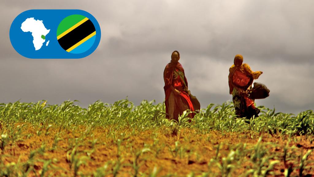 tanzaniaHeading