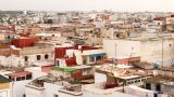 How do you plant a church in North Africa?